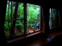 すがすがしい緑の窓景色