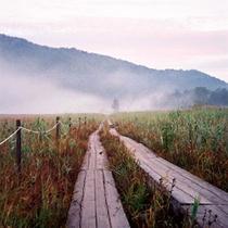 早朝の秋の尾瀬