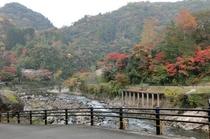 2012 武田尾橋からの眺め