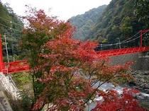 紅葉と武田尾橋