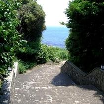 庭園から磯へと続く小道。すぐ先は穏やかな海