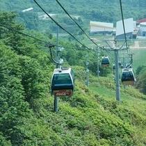 ◆夏油高原◆毎年6月には新緑まつりが行なわれます。