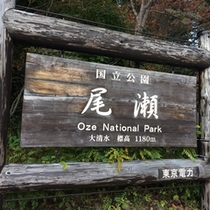 *大清水/ここからスタートするハイキングコースは、人気の尾瀬沼・大江湿原へと繋がっています。