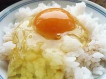 とろ〜り卵かけご飯