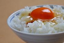 卵かけご飯アップ