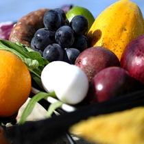 【フルーツ】旬の食材を使用したお料理に舌鼓