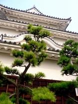 ニューレオマワールド春イベント丸亀城