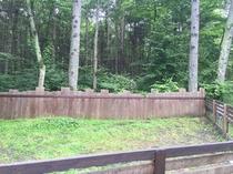 森の中のドッグラン