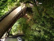 夜のこおろぎ橋