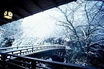 テラスより冬のこおろぎ橋