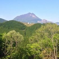 「別邸ゆむた」から望む由布山。日常の喧騒からゆったりと落ち着いたひと時をお過ごしいただけます。