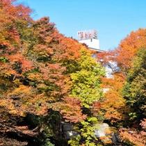 紅葉の横瀬川からの全景