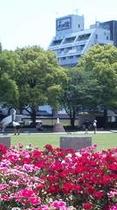 南洲館から歩いて30秒...お花と緑溢れる中央公園