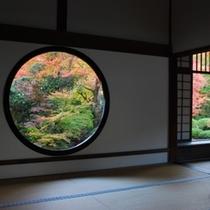 ◇京の風景 紅葉2