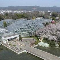 ◇京都府立植物園 (左京区)