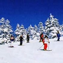 *蓮池スキー場