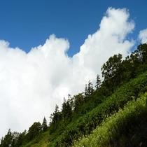 2015年 初夏の天元台高原のトレッキング