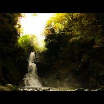 白布の滝2