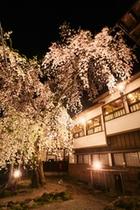四季ページ用(春2)…夜桜外観