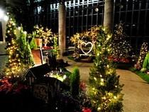 淡路夢舞台のクリスマス