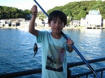 魚釣り風景