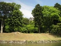 ◆お堀から見た彦根城◆お堀の周りを屋形船で遊覧することができます♪