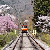 *箱根登山鉄道