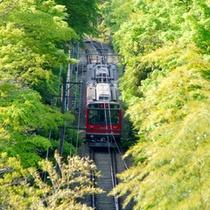 *登山電車