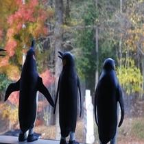 ■館内 外を眺めるペンギン