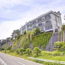 *師崎港より高速船で10分!360度海に囲まれた日間賀島で海の恵みを堪能する休日を過ごそう!