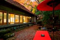 紅葉の絨毯のお庭