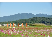「春過ぎて夏来たりならば白妙の衣干したる天の香久山」の大和三山