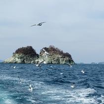 【周辺スポット】和歌浦の海