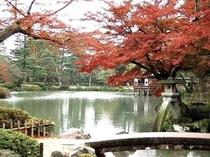 紅葉が綺麗に見える兼六園