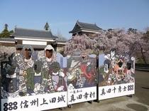 上田城の桜