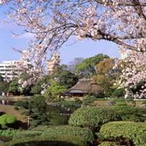 ■水前寺成趣園<お車で約15分>