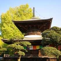 鑁阿寺 日本百名城に選ばれております!足利氏のお家でした♪