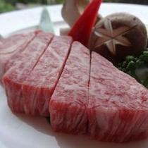 飛騨牛フィレ肉