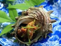 能登町宇出津産のサザエ。食べやすいように小さく刻み、自家製味噌をのせております