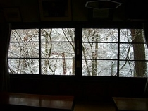 ホールからの雪景色