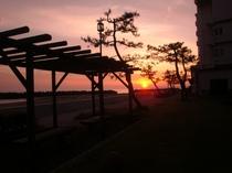 芝生広場から見る朝日