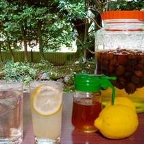 レモンスカッシュと梅ジュース