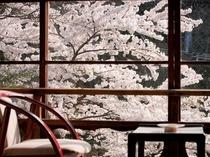 ◆【松の間5 二間】 角部屋より 春