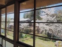 ★【梅の間】 広縁 春