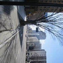 アクセス車①駐車場は裏手に併設しております(写真はホテルが面している東二番町通りでホテルは左側)