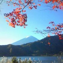 紅葉と富士山。(写真はイメージです)