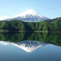 富士山(2012年5月)