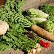 地元産の無農薬野菜