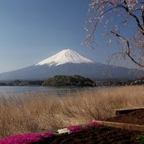 大石冠雪の富士
