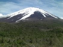 【四季の富士】奥庭からの富士山